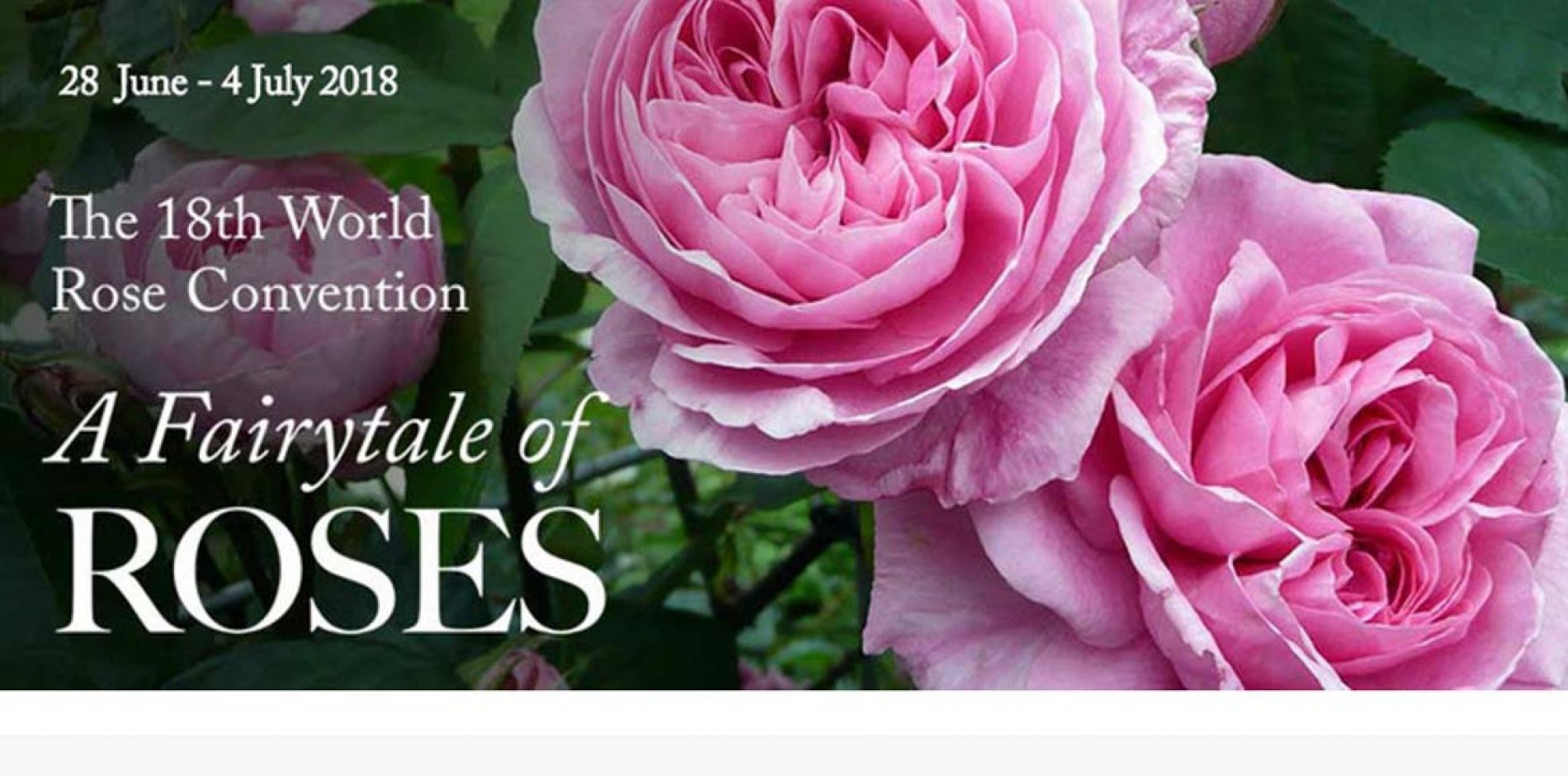Royal News 18e World Rose Convention
