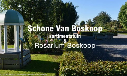 Schone Van Boskoop – 21 september 2019