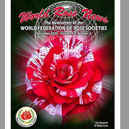 World Rose News december 2020